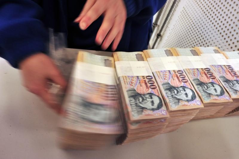 Vengrijoje humanitarinės organizacijos šildomos kūrenant banknotus