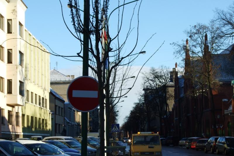 Liepų gatvėje pabaigta atsodinti naujus medžius