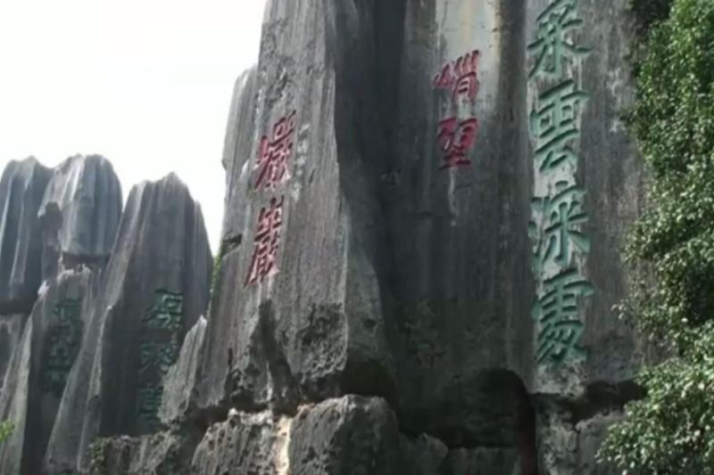 Gamtos stebuklai: Šilino akmeninis miškas