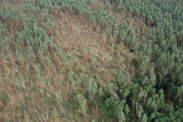 Nuostoliai dėl audros – daugiau kaip 20 milijonų litų (papildyta 14.40 val.)