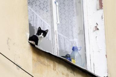 Aštuonmetę sumušė kaimynė