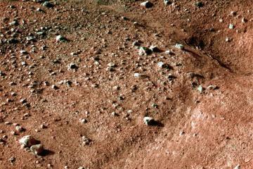 Marse prasidėjo gyvybės paieškos