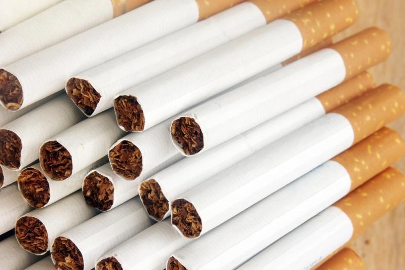 Automobilyje – 11,4 tūkst. pakelių kontrabandinių cigarečių