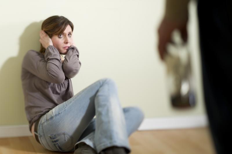 Neaišku, ar įmanoma įgyvendinti kovos prieš smurtą šeimoje įstatymą