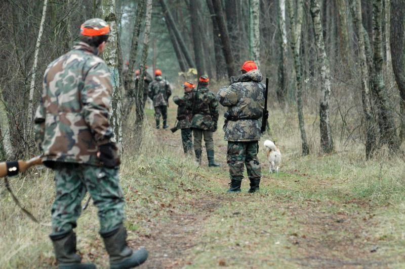 Seimas priėmė Medžioklės įstatymo pakeitimus