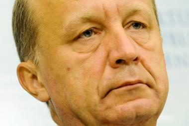 A.Kubiliaus nuomone, Konstitucinis teismas neturi kištis į ekonomiką