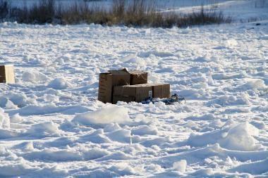 Iš Rusijos ledu bandyta atitempti 10 tūkst. pakelių cigarečių