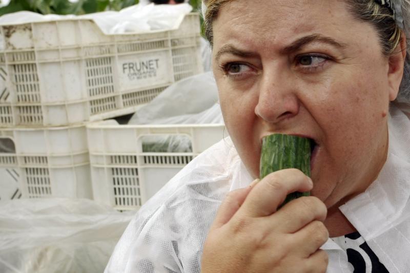 Dėl eksporto draudimo agurkai gali pigti iki lito