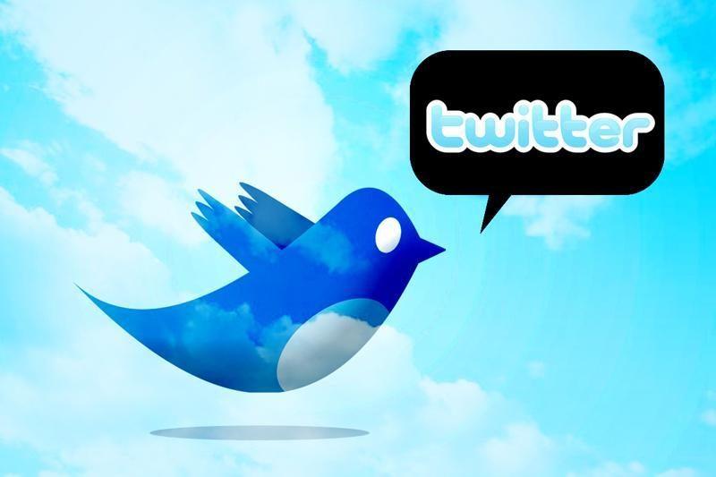 """Koks socialinio tinklo """"Twitter"""" paukščiuko vardas?"""