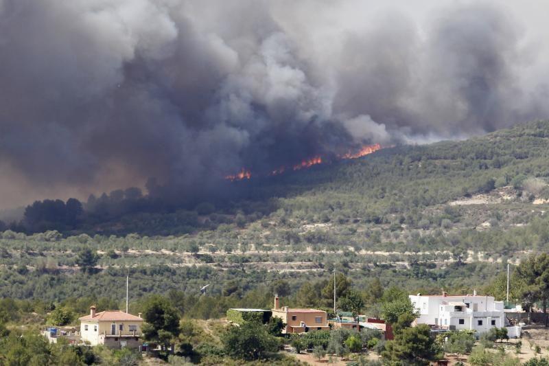 Ispanijoje gaisrai išdegino plačius miškų ruožus (foto)