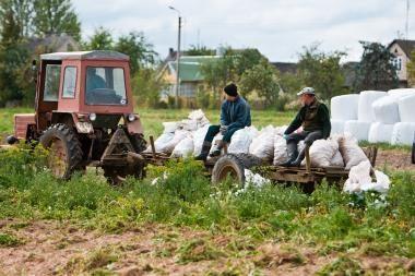 Analitikai: žemės ūkio sektoriaus patrauklumas augs