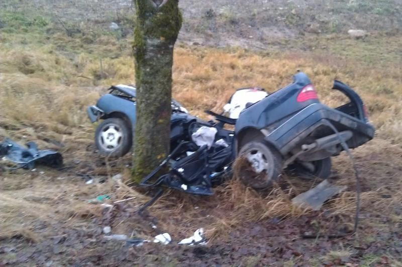 Avarijos prie Rietavo metu žuvo vairuotojas (atnaujinta)