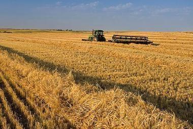 Vyresniems ūkininkams jau išmokėta 2 mln. litų