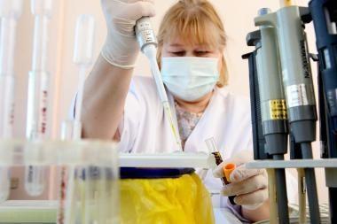 Kiaulių gripas Panevėžyje sėja paniką