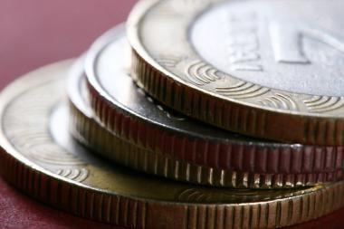 Įtarimo kartelė vežamoms per sieną sumoms - 10 tūkst. eurų