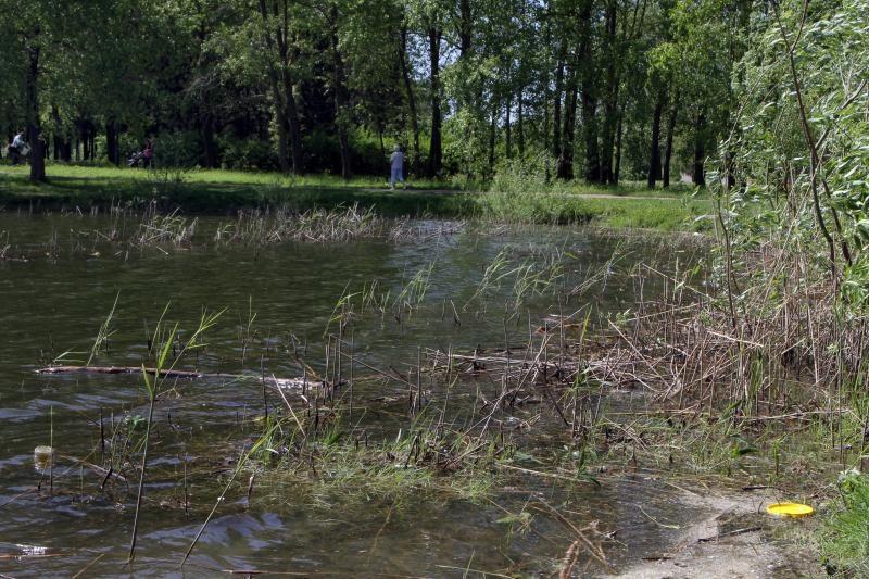 Ukmergės rajone į tvenkinį su šeima įlėkęs vairuotojas buvo apsvaigę nuo narkotikų