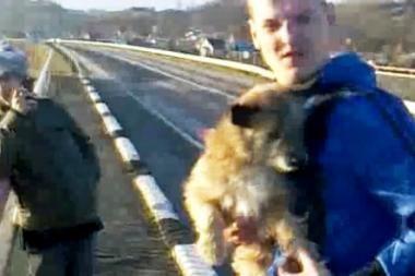 Šunį nuo tilto numetęs jaunuolis pasidavė policijai