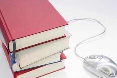 Bibliotekose internetu naudojasi apie trečdalis gyventojų