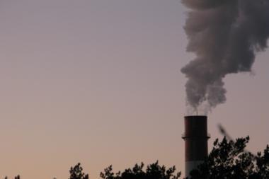 Dėl atliekų deginimo gamyklos reikalauja atleisti G.Palucką