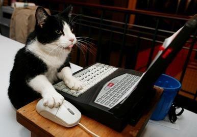 Atsisveikinkit su kompiuterio pele