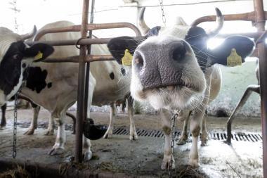 Nauji mokesčiai ūkininkams: kiek ir už ką?