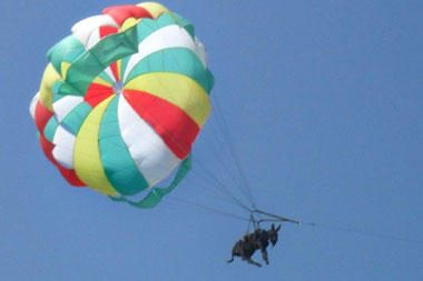 Rusijoje britų žurnalistams parduota netikra asilė parašiutininkė