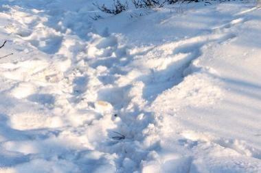 Įtariamąjį išdavė pėdsakai sniege