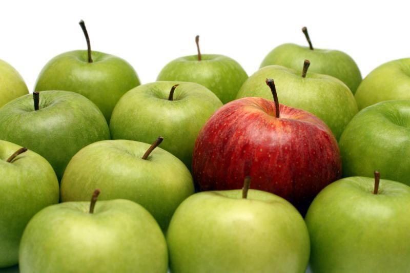 Sodininkai: obuolių derlius šiemet - tik vidutinis