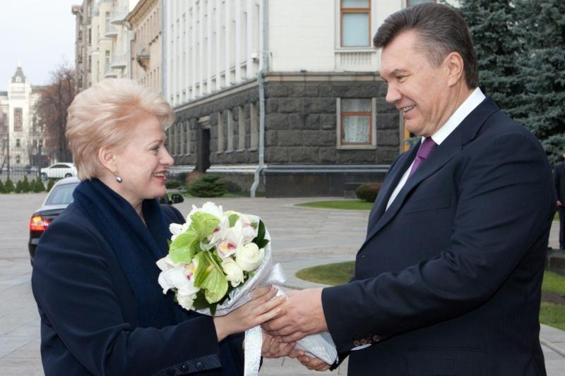 D.Grybauskaitė: ES pasirengusi glaudesniems ryšiams su Ukraina
