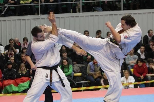 Supersunkiasvorių karatistų finale - D.Imbro nesėkmė