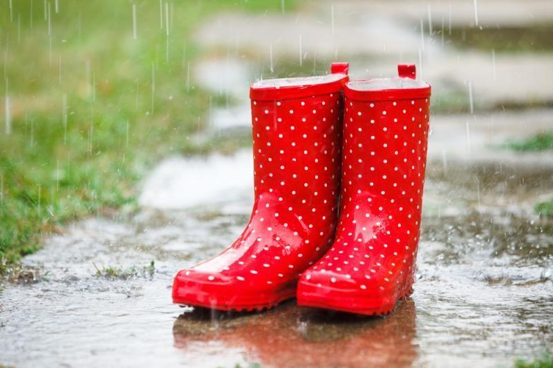 Savaitgalį lietaus išvengti nepavyks, bus vėsoka