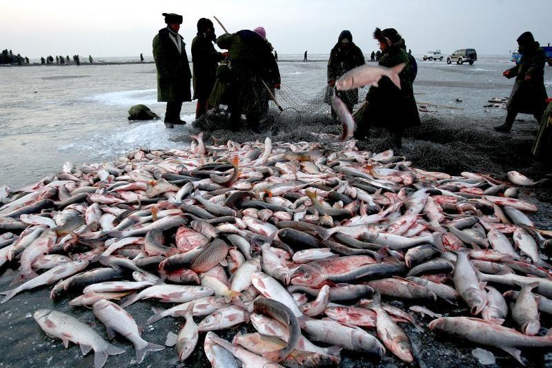 Kinijoje žvejai atlieka ritualą, kad laimikis būtų gausus