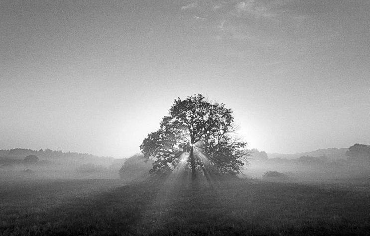Augustino Našlėno fotografijų parodoje – tolimųjų horizontų pilkuma