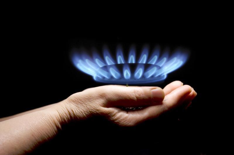 Prezidentė nėra tikra, kad pavyks susitarti dėl mažesnių dujų kainų