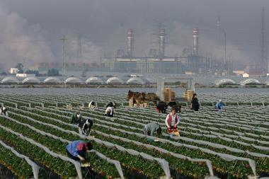 Darbininkes imigrantes prievartaujantys Ispanijos ūkininkai pagaliau sulauks atpildo?
