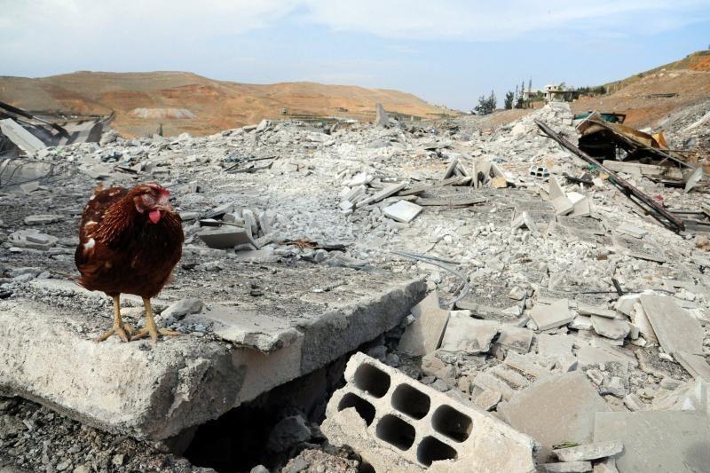 Per Izraelio aviacijos reidus Sirijoje žuvo mažiausiai sirų 42 kariai