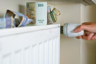 Seimas pritarė Prezidentės veto Šilumos ūkio įstatymo pataisoms