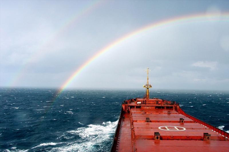 Cunamio nuneštas laivas pasiekė Kanadą