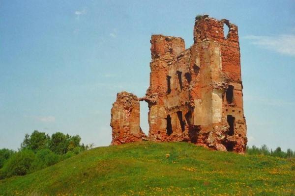 Baltarusijai atsigręžus į LDK paveldą, aktyviau įsitraukti siekia ir lietuviai