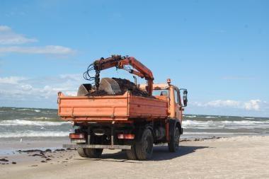 Palangos paplūdimyje – neregėta gausybė dumblių