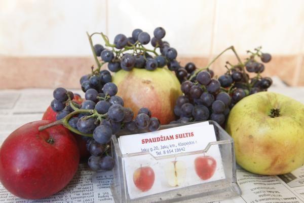 Vilniuje rengiama sveiko maisto vakaronė