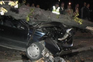 Mašiną sustabdė stulpas ir medis
