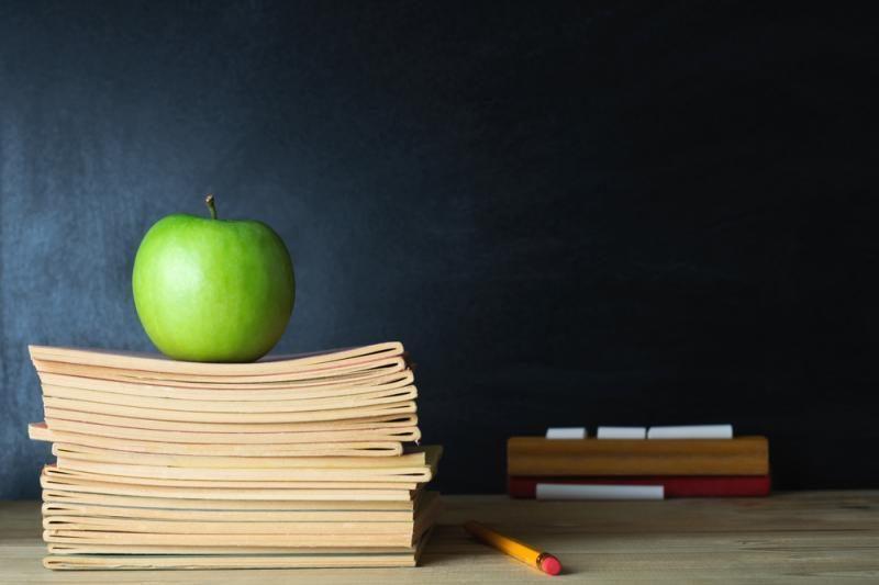 Siūlo pedagogams suteikti atostogas kvalifikacijai kelti