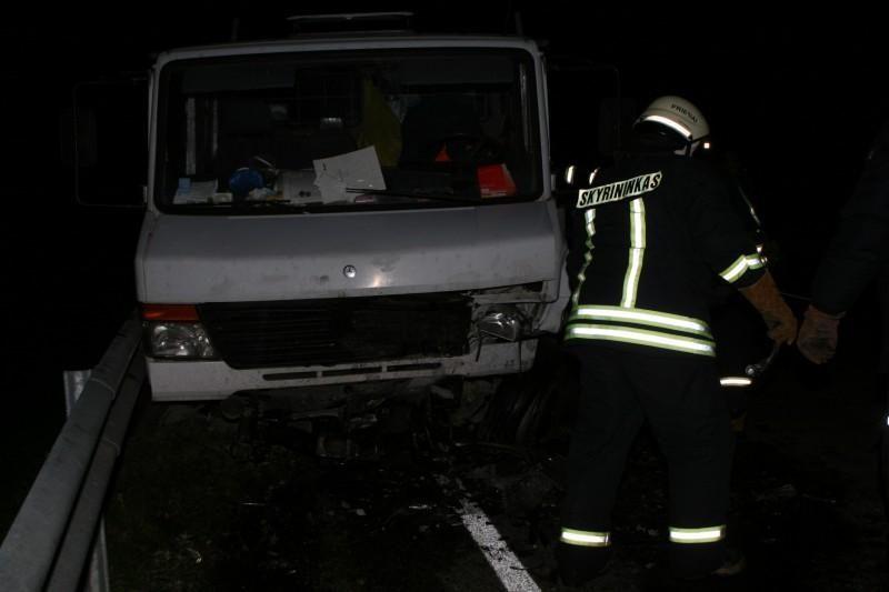 Avarijoje žuvo Seimo narys Juozas Palionis