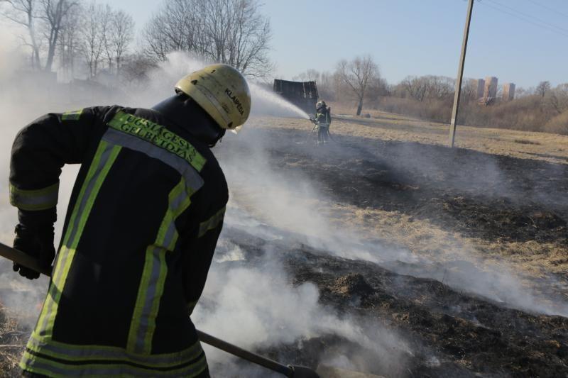 Šalia Klaipėdos siautėjančios liepsnos grasina transporto kompanijai