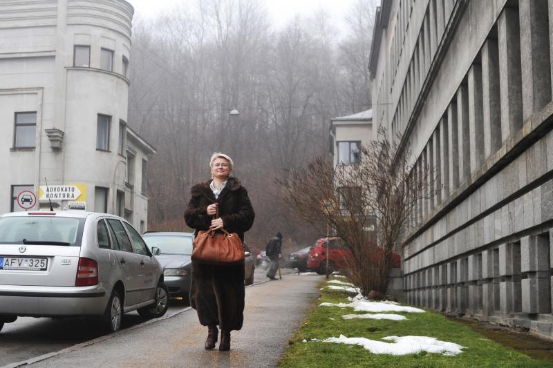 L.Stankūnaitės advokatas: mergaitės ryšys su mama yra susilpnėjęs