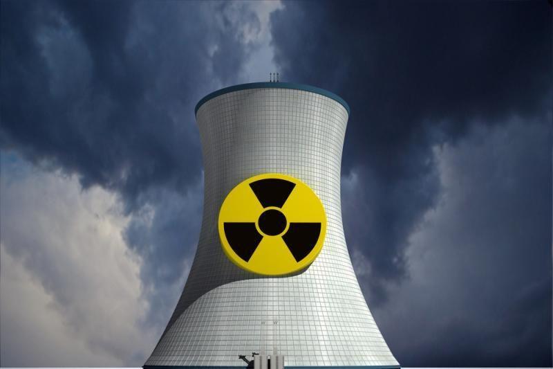 Žalieji: atominės jėgainės statybos Lietuvoje kelia daug klausimų
