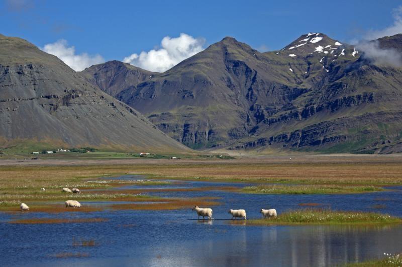 Iš Kauno – tiesioginiai skrydžiai į Islandiją