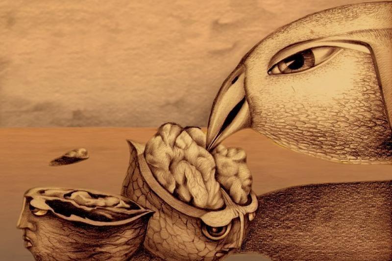 Palangoje - tarptautinis animacinių filmų festivalis