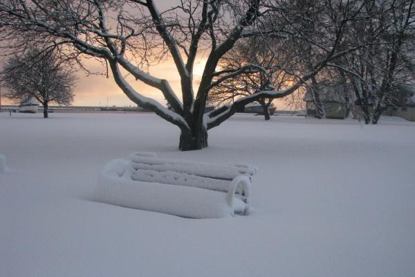 Neringoje sniegas sutrikdė susisiekimą
